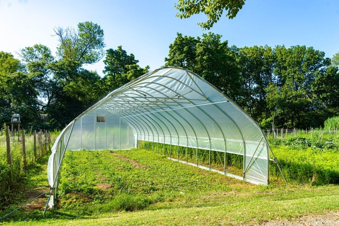 The Haverfarm high tunnel, a plastic-covered, greenhouse-like structure, with a ladder under it as it is being constructed.
