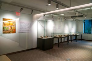 One wall of the gallery featuring mounted description cards and three glass cases full of artifacts.